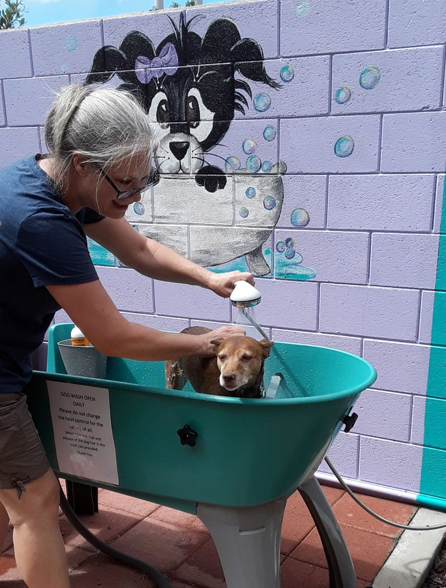Dog Washing Station